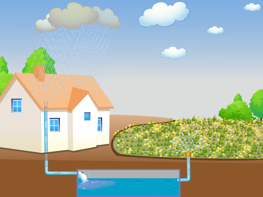 rain-harvesting-systems